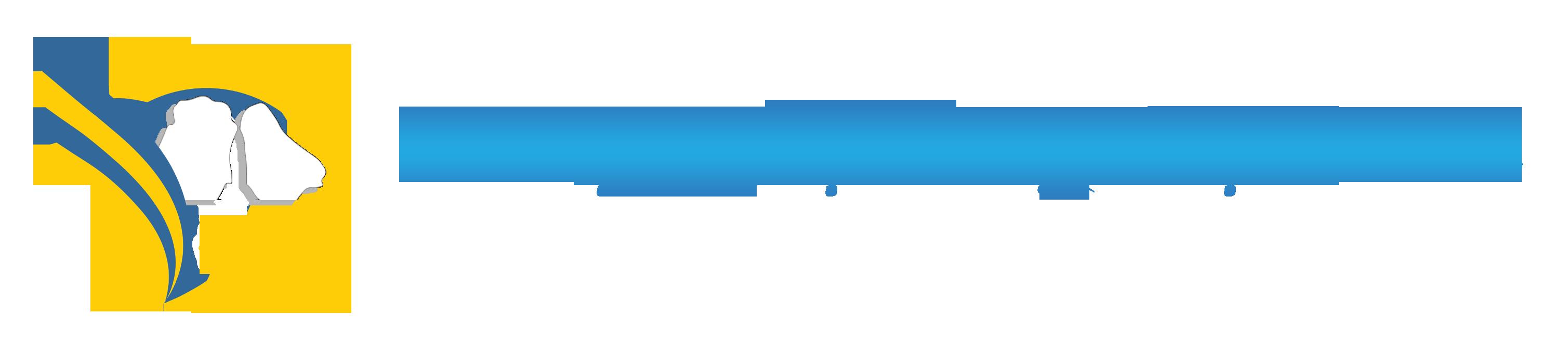 Du Lịch Hạ Long Việt nam